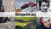 retrospective2015